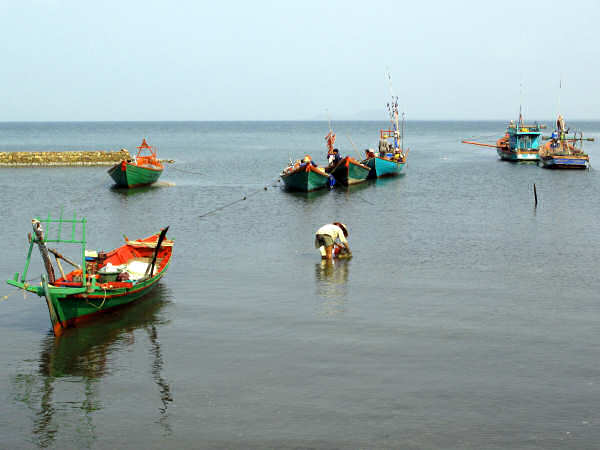 Typical Boats of the Southern Gulf of Thailand