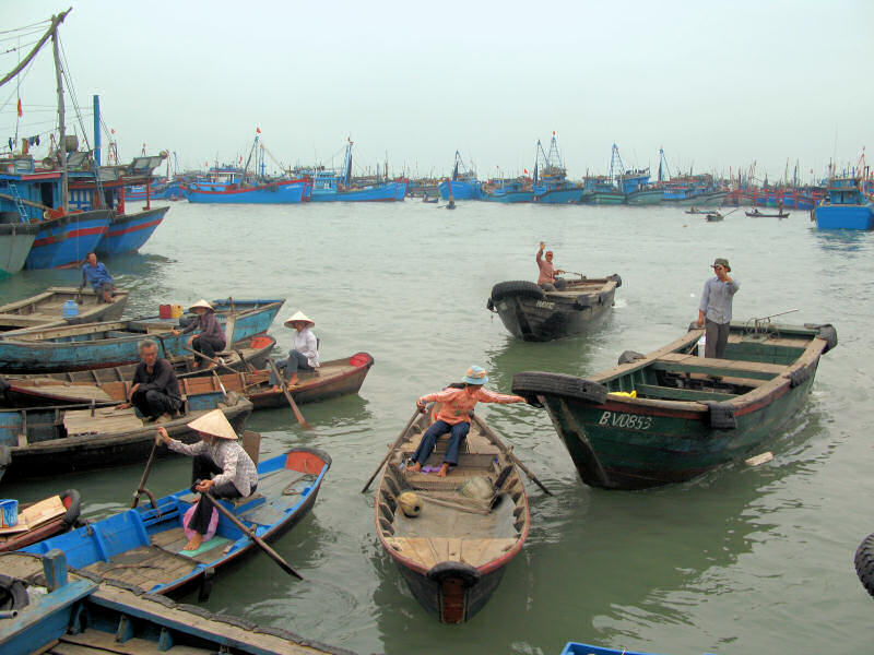 Vung Tau Harbor: MFVs and small traditional boats